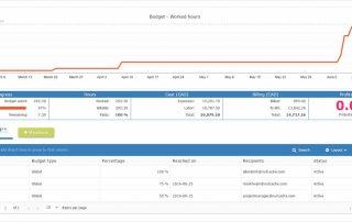 project-budget-milestones