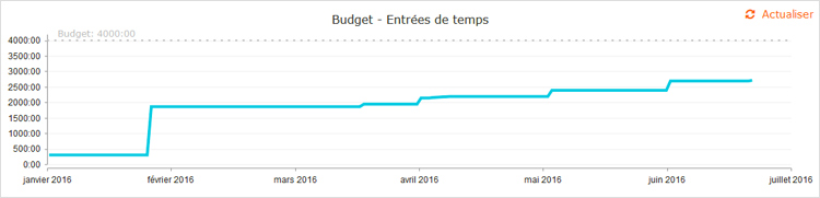 indicateur graphique du budget